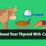 collagen and thyroid