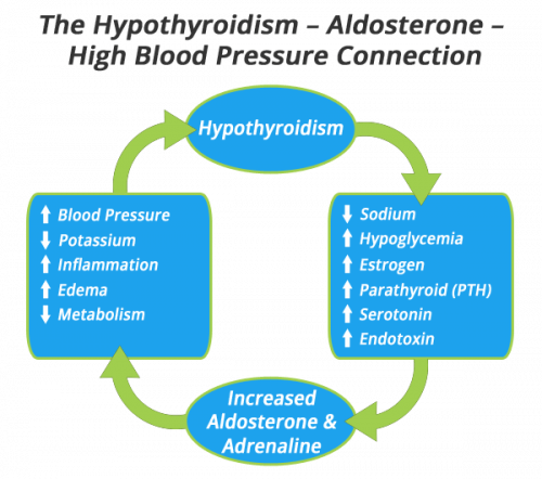 hypothyroidism-high-blood-pressure-connection