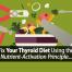 thyroid diet fix