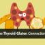 hypothyroidism-hashimotos-gluten